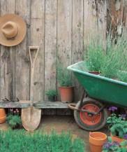 营造最接近大自然的家庭园艺