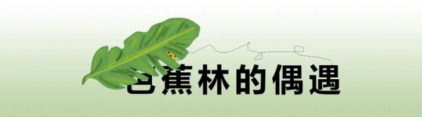 乌卢陆游童装冬季奇妙冒险