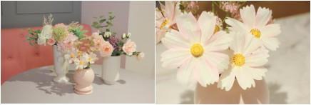 37°消费有礼 | 承包你一年四季的花
